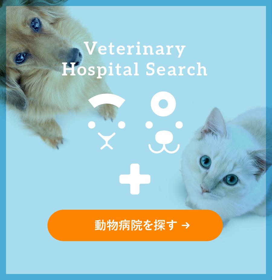 動物病院を探す