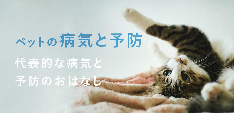 ペットの病気と予防